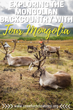 Tour Mongolia Review | Tour Mongolia | Mongolia Tour | Best Tour Company In Mongolia | Mongolia Travel